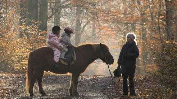 Foto: Rude Skov - børn på pony i skoven - foto af jean Schweizer