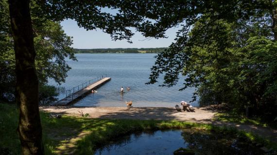 Foto: Sjælsø - badebro og badegæster