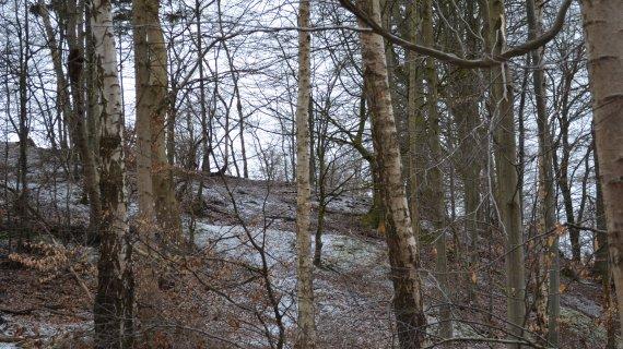 Foto: Højbjerg