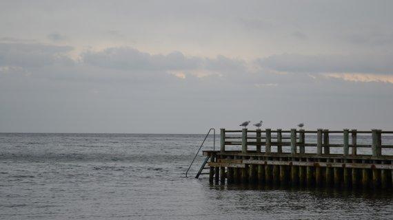 Foto: udsigt fra Lokes Høj