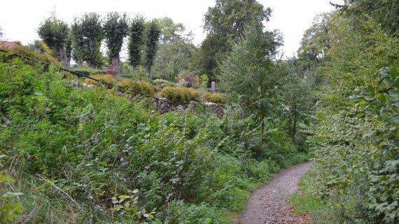 Foto: Søllerød Kirke - hulvejen