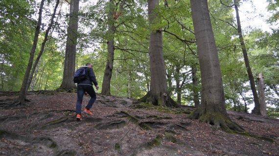 Foto: Maglebjerg - mand på vej op igen