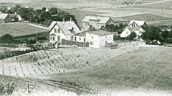 Foto: Udsigt fra Høbjerg 1901