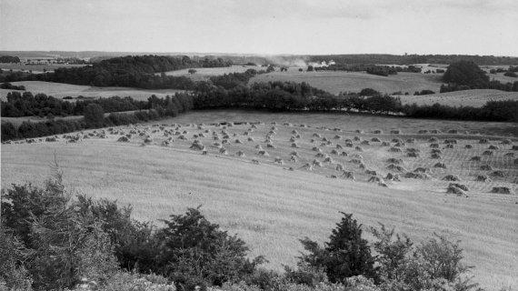 Foto: Udsigt fra højderne ved Høje Sandbjerg 1937