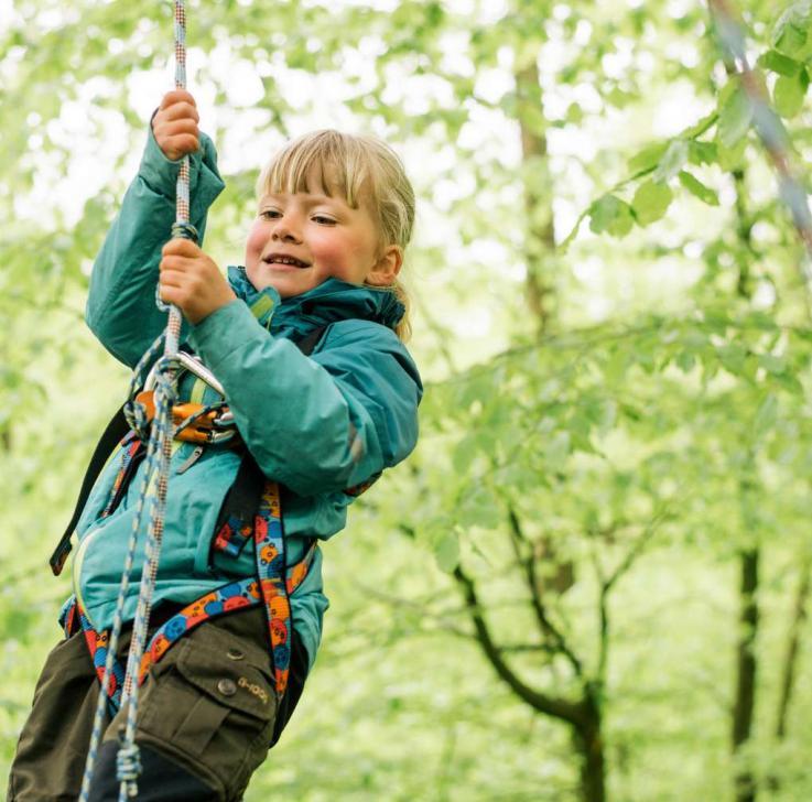 Foto: Skoven Dag. Arrangement i naturskolen ved Rude Skov. Børn der klatrer i træer.