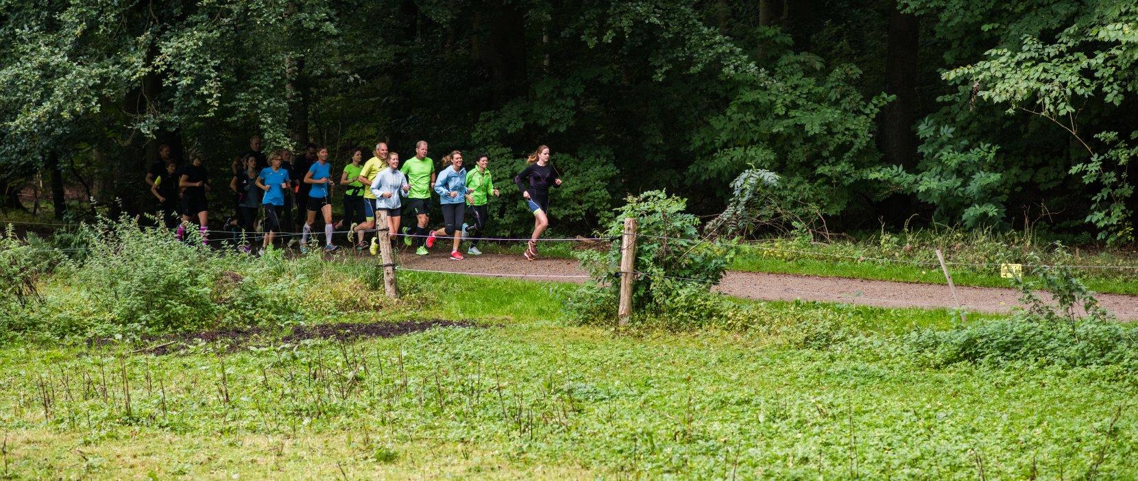 Foto: Løbere i skov