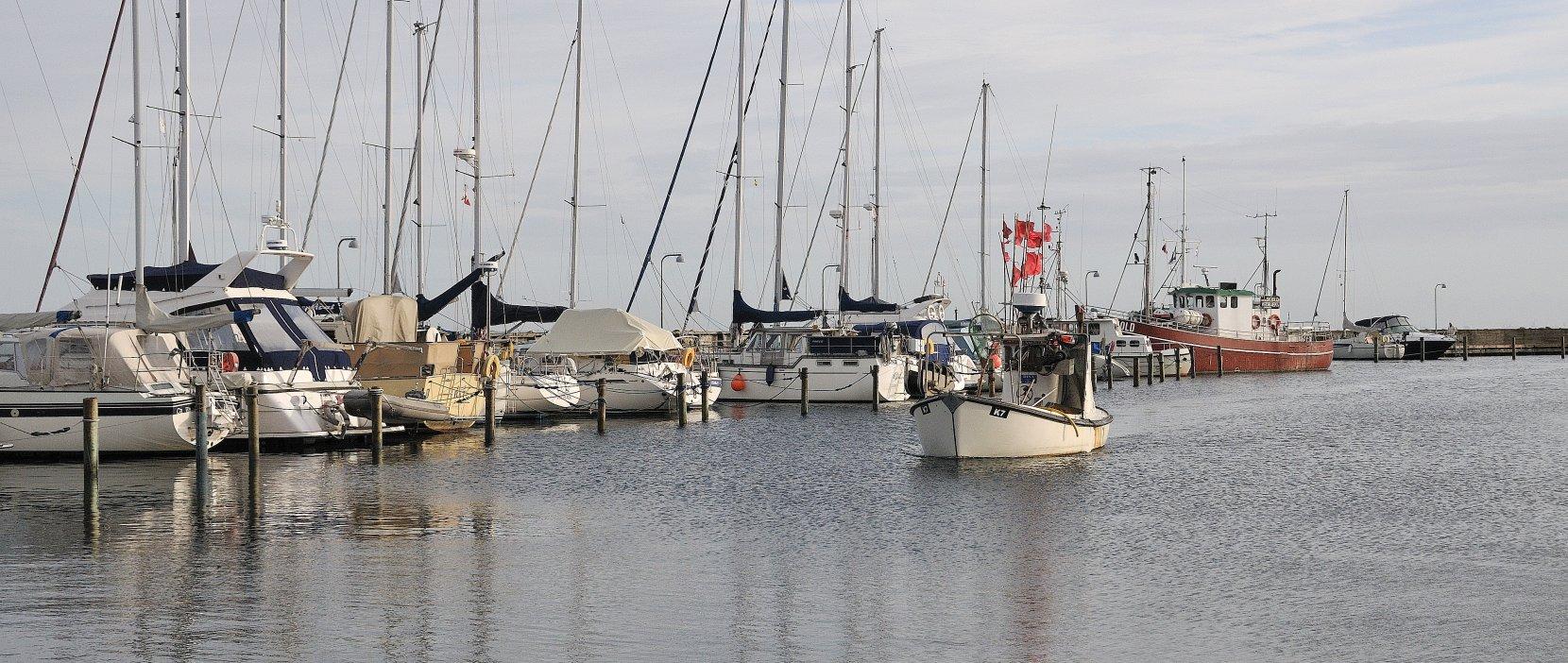 Fiskebåd på vej i havn i Vedbæk: Foto jess Kimmerslev