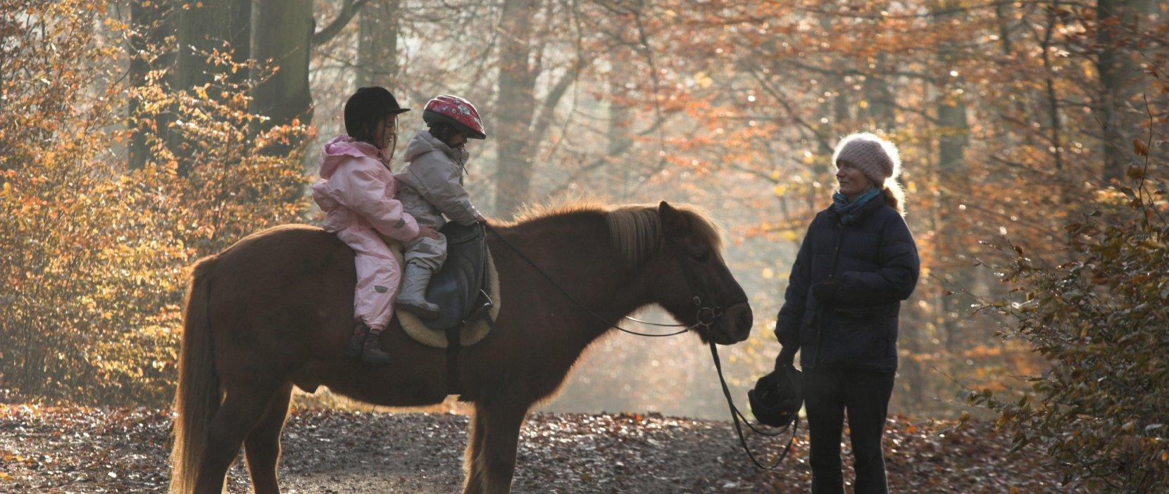 Foto: Rude skov - børn på pony - foto: Jean Schweizer