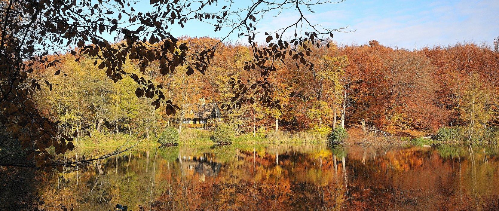 Enrum sø - Foto: Jess Kimmerslev