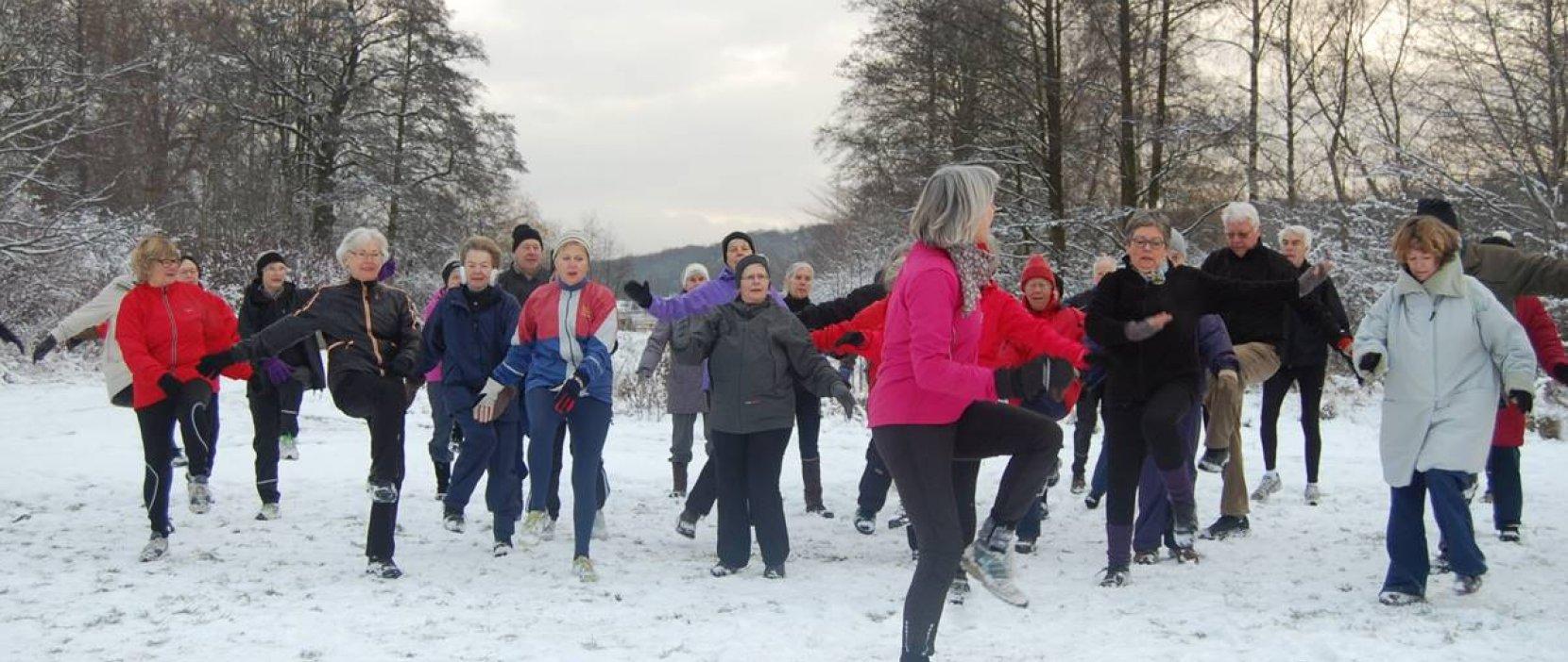 Grøn Puls motion om vinteren