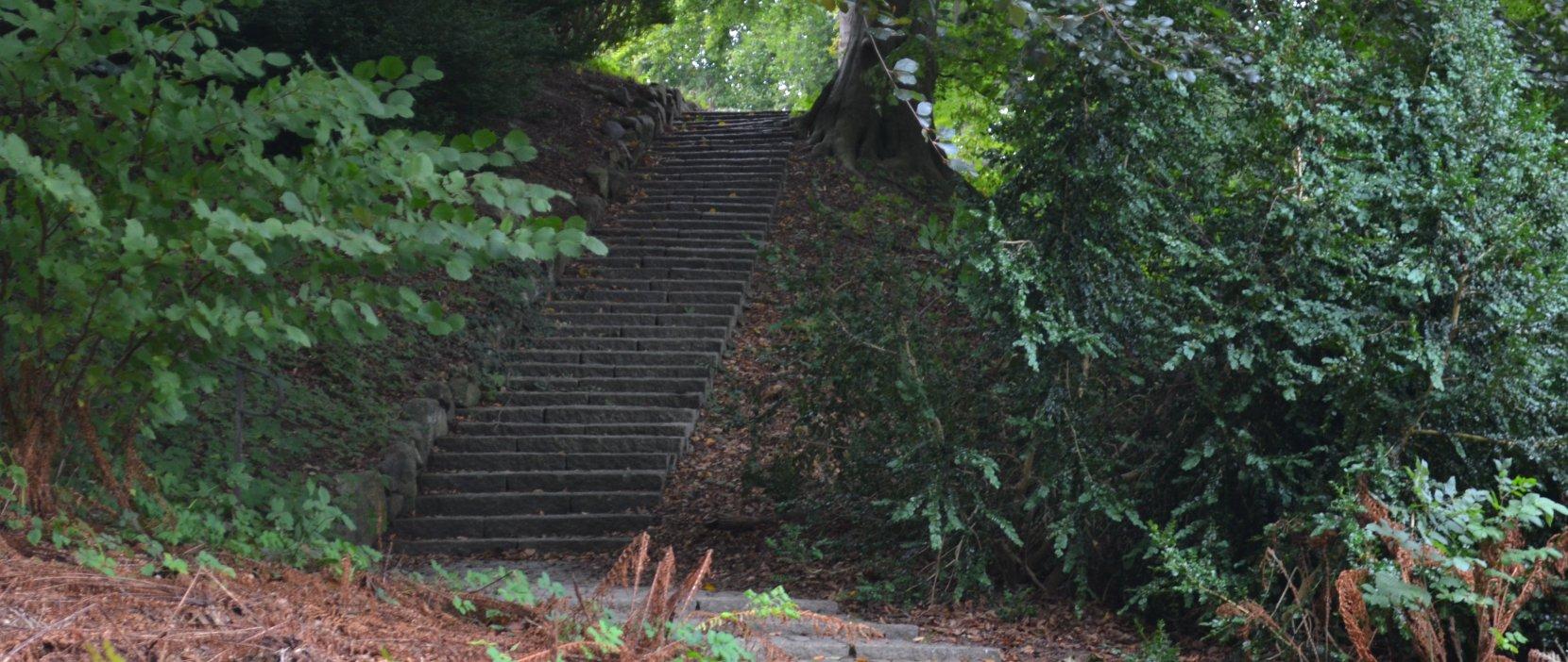 Foto: Søllerød Kirkegård lang trappe